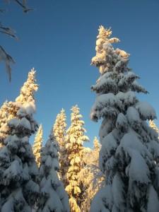Den 27/12 2014 var det mycket snö.