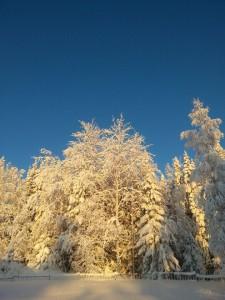 Mer snö!